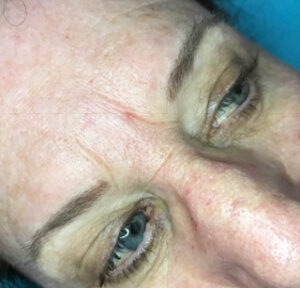 Hair-stroke Brows- before 2 year touch up