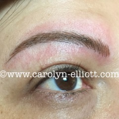 View examples of permanent make up : Eyebrows