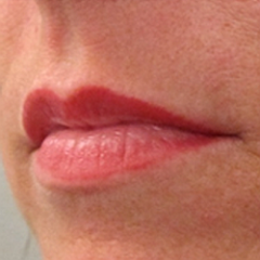 View examples of permanent make up : Lips